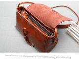 Sacchetto di spalla di vendita della signora Handbag New Designer Hot di promozione di modo (WDL0113)