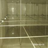 Clarabóias de plástico para o tanque de água
