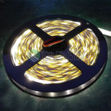 Luz de la luz de tira del brillo SMD3528 LED de Hight los 60LEDs/M 12VDC LED