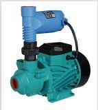 Buona qualità e pompa ad acqua periferica automatica di apparenza