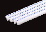 Energiesparende Messingeinlage-benennt Plastikrohrleitung Kurbelgehäuse-Belüftung PPR Rohrfittings