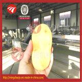Légume fruit industriel traitant la machine de séchage de lavage de découpage de machines