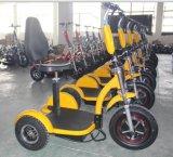 3つの車輪のゴルフカートが付いている電気ゴルフスクーター
