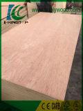 madeira compensada de 3.6mm Bintangor para mercado de Médio Oriente, África