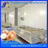 Máquina de rebentamento de arruela da escova (batata, cenoura, a cebola, o gengibre)