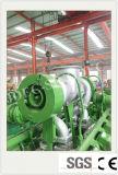 Planta de energía de biogás Setwith generador de la ISO (300 kw).