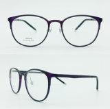 in den auf lager Plastikheißen verkaufenden neue Art-Licht-Brillen Eyewear optischen Stahlrahmen