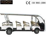販売のための14人の乗客の電池の観光のカート