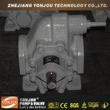 Pompe d'essence et d'huile lourde, pompe à engrenages pour la cargaison ou marin, pompe de pétrole de vitesse