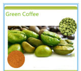 18 Sacs Best Share Green Coffee