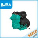 380W Wzb Serien-Roheisen-einzelnes Stadiums-zentrifugale Wasser-Pumpe