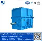 2500kw 6.6kv 1000rpm 다람쥐 감금소 AC 전기 모터