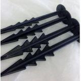 De zwarte Spijkers van de Pin van de Grond van de Kleur Plastic