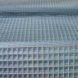 鳥籠のためのPVCによって塗られる電流を通された溶接されたワイヤー正方形か囲う網