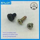 Color Zinc Round Head Side Head Screw for Car Shares