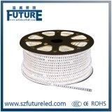 AC220V impermeabilizzano l'illuminazione di striscia di SMD5050 LED nel bianco caldo