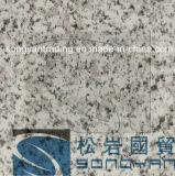 Здание картины катушки PPGI цвета покрытое стальное мраморный