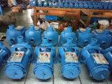 Электрическая центробежная водяная помпа Cpm158 для отечественной пользы