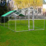 Großer Metallhuhn-Korb-Hinterhof-Henne-Haus-Rahmen laufen gelassener im Freienrahmen