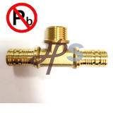 Pex 관을%s Pex 무연 금관 악기 여성 이음쇠