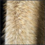 Fur artificiale Fabric con Long Plush