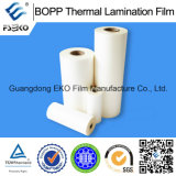 Film de pain de stratification thermo de BOPP