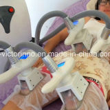 미장원 기계를 체중을 줄이는 4개의 손잡이 체중 감소 Cryolipolysis