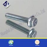 Bullone della flangia dell'acciaio inossidabile A2 A4 M6 Hexagonl