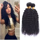 Virgin Brazilian Curly Human Hair Extensions