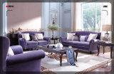 Insieme vivente poco costoso del sofà del tessuto di Roon