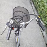 Lithium-Batterie-alter Mann-elektrisches Dreirad