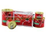 Tomatenkonzentrat Indien konserviert Tomatenkonzentrat