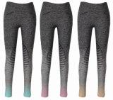 Gradiente de nuevo tejido de silicona de Equitación Pantalon señoras (SMB17003-2)