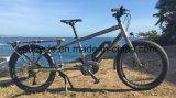 "24 "" MITTLERES Fahrrad des Motore mit Gebirgsfahrrad des Bafang maximalem zentralem Bewegungssystems-E"