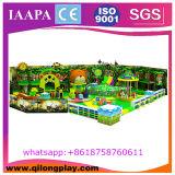 Speelplaats van het Schip van de Piraten van het Spel van het Ongehoorzame Kasteel van kinderen de Zachte Grote Binnen