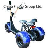1000W 샤프트 모터를 가진 Harley Citycoco 전기 세발자전거