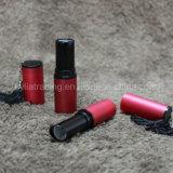 Privé Etiket 24 de Kleuren van PCs 12 maakt de Stok van de Lippenstift waterdicht (Lt.-14)