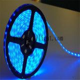 Hohes Lumen hoher Kriteriumbezogene Anweisung hochwertiger Doppelt-Reihe 5050 LED Streifen