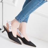 Lederne flache beiläufige Schuhe der Ebene-Dame-Pointed Toe Ballerina