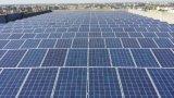 Pila solare del modulo policristallino del comitato solare