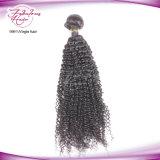 Vierge péruvien cheveux afro Look Kinky les cheveux bouclés tisse