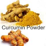 La curcumine 95 % de la poudre de racine de curcuma Curcuma extrait naturel en poudre