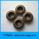 De permanente Ring van de Magneet AlNiCo voor Meter