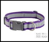 Incandescenza nel collare riflettente scuro di addestramento del cane di animale domestico di sicurezza