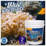 수족관 바다 소금 (HZY001)