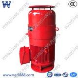 Асинхронный двигатель Пол-Вала серии Vhs (b) вертикальный для вертикального насоса турбины