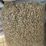 Novo corte de amendoim