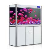 El tanque de pescados de acrílico grande modificado para requisitos particulares de Eco de la manera