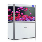 Tanque de peixes acrílico personalizado de Eco da forma grande