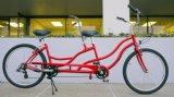 26 بوصة ترادف درّاجة, ترادف شاطئ طرّاد درّاجة من 7 سرعة